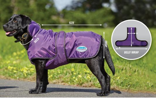 chewy deal sale dog coat jacket